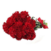 12 Red Carnations: Send Thank You Flowers to Canada