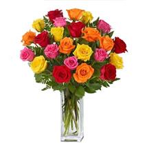 24 Mix Roses:
