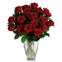 24 Red Roses in Vase: