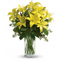 Charming Yellow: Gifts to Canada for Friend