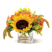 Country Sunflowers CND: Anniversary Gifts Vancouver