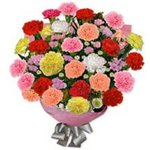 Carnation Carnival Fin: Gifts to Finland