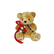 Charlie Bear: Gifts To Indonesia