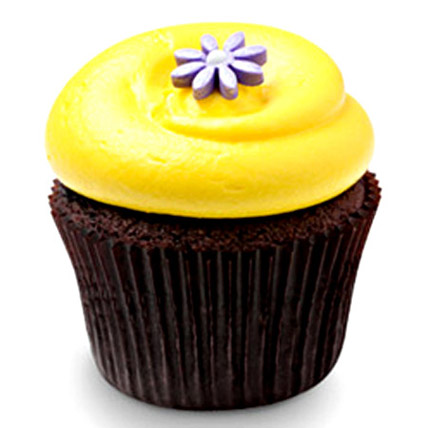 12 Sunshine Chocolate Cupcakes by FNP