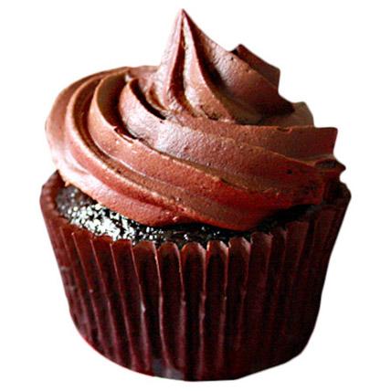 Chocolate Cupcakes 12