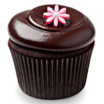 Chocolate Squared Cupcakes 12