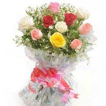 Summer Pop Roses: