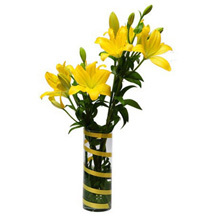 6 Lilies For Friendship OM: Valentines Day Gifts to Oman