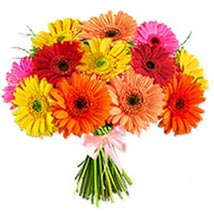 Crazy Daisy oma: Valentines Day Gifts to Oman