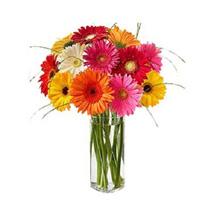 The Vibrant Spin SAU: Flowers to Saudi Arabia