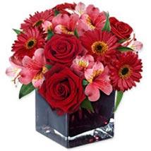 Ruby Love: Send Christmas Flowers to Singapore