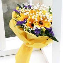 Sunshine: Send Christmas Flowers to Singapore