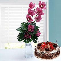 Classic Romance: Birthday Flowers and Cakes in UAE