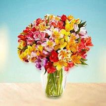 Radiance: Send Flowers to UAE