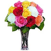 12 Long Stem Assorted Roses: Valentines Day Gifts to Manchester