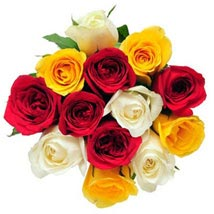 12 Mix Color Roses: Send Flowers to Kansas City