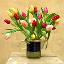 30 Assorted Tulips: Valentines Day Gifts Manchester