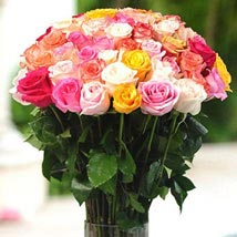 36 Multicolor roses in Vase: Send Flowers to Kansas City