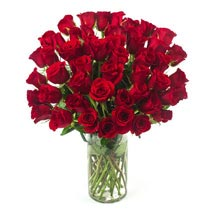50 Long Stem Red Roses: Send Birthday Gifts to Raleigh