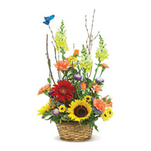Butterfly Garden USA: Send Flowers to Kansas City