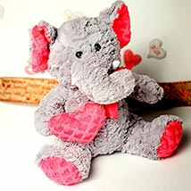 Cute Elephant Soft Toy: Valentines Day Gifts Manchester