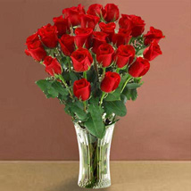 Long Stem Red Roses: Birthday Gifts Raleigh