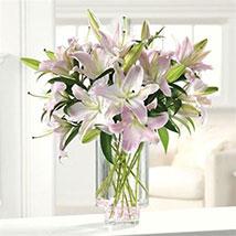 Ooh La La Lilies: Valentine Day Gifts to Portland