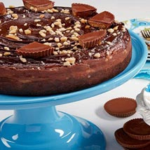 Peanut Butter Cup Cheesecake: Cakes to Columbus