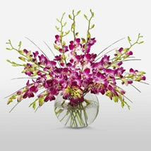 Purple Orchids in Vase: Send Flowers to Kansas City
