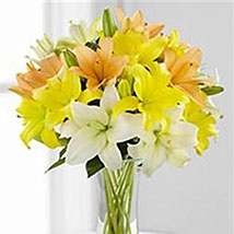 Simple Asiatic Lilies: Valentines Day Gifts Manchester