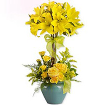 Lily Topiary wes: Send Gifts to West-Indies